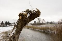 janvdb-oud-en-sneeuw